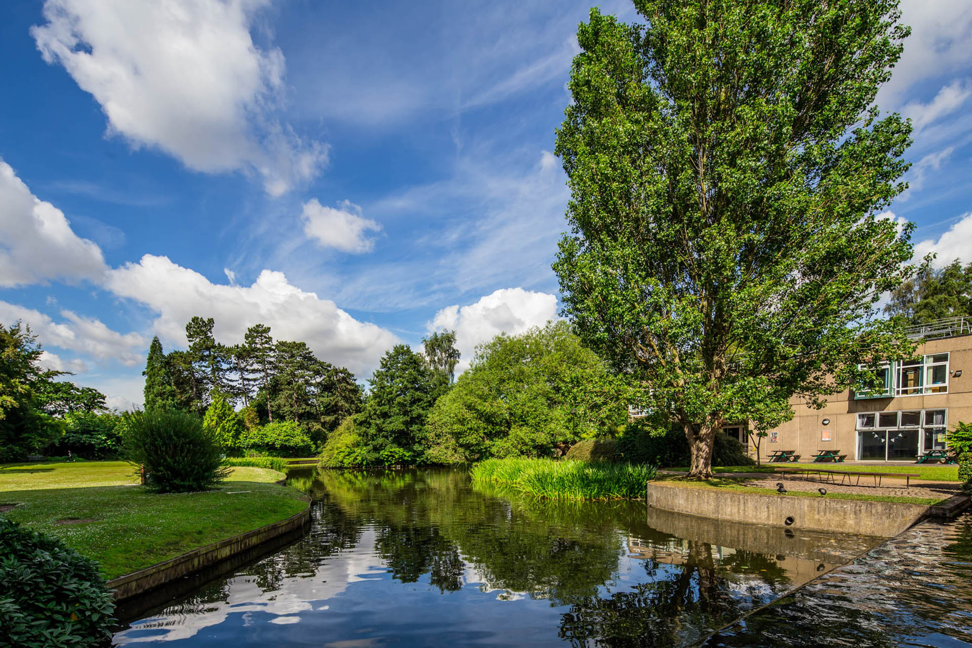 An image of the University of York's West campus with a lake and trees.